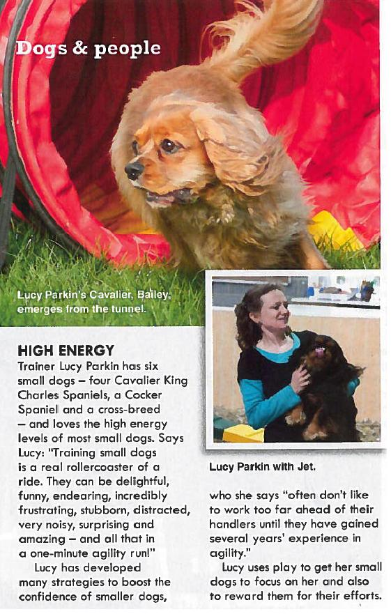 Dogs Monthly Article Nov 2012